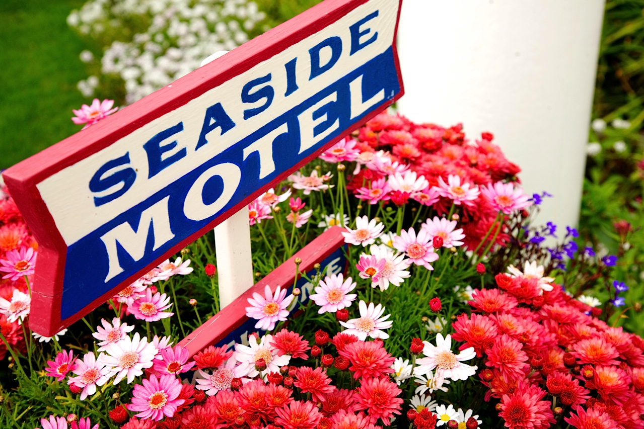 Seaside Motel, Cayucos CA