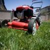 DFW Lawn Company