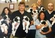 Ash Creek Animal Hospital - Bridgeport, CT