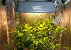 Plant Lighting Hydroponics   Twinsburg, OH