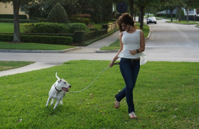 Magic Pet Baldwin Park - Orlando, FL