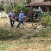 Bob Thompson Tree Service