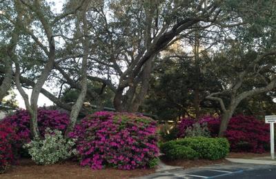 Gulf Breeze Animal Hospital - Gulf Breeze, FL