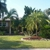 Palm Island Growers