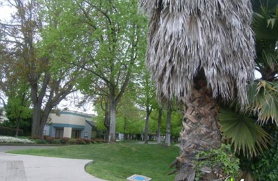 Aikido of Fremont / Aiki Zenshin Dojo - Fremont, CA