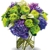 Plaza Flowers- Florist of the Year