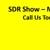 SDR Show - Mechanical Bull Rental