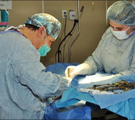 Lincoln  Park Veterinary Hospital - Lincoln Park, MI