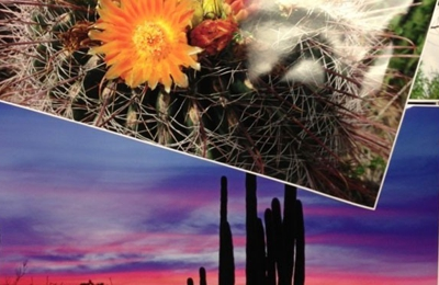 Reproductions Inc. - Tucson, AZ