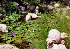 Complete Pond Care - Las Vegas, NV