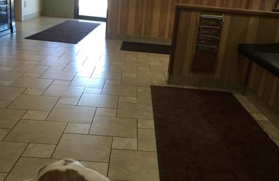 Carson Valley Veterinary Hospital - Minden, NV. Jax loving his visit.