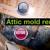 Mold Level Corporation