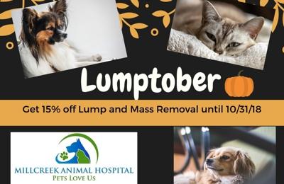 Millcreek Animal Hospital - Ogden, UT. October Monthly Special