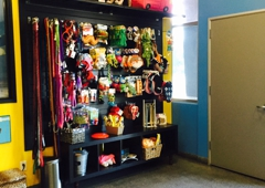The Pampered Pet Hotel & Spa - Woodland Hills, CA