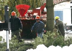 Kent's Tree Service Inc - Levittown, PA