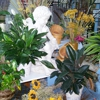 Artistic Flowers & Gifts