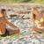 iTAN Sun Spray Spa - Ynez