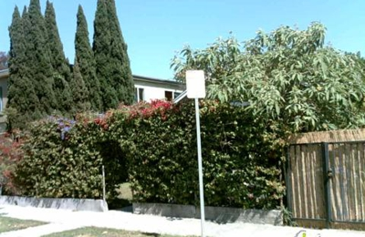 Bent Grass - Venice, CA