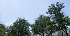 Cleveland Botanical Gardens - Cleveland, OH