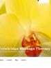 Alison Trowbridge Massage Therapy
