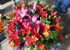 Colorado springs wholesale florist 548 e costilla st colorado colorado springs wholesale florist colorado springs co mightylinksfo
