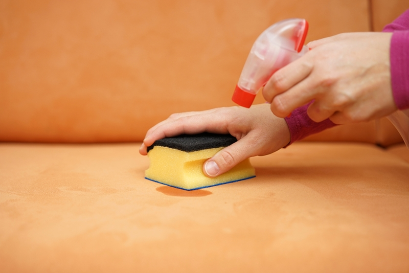 Many common household products are great at removing stains.
