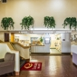 Econo Lodge Inn & Suites Raleigh North - Raleigh, NC