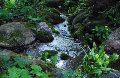 Creative Garden Spaces - Oak Ridge, NC
