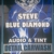 Blue Diamond Audio and Tint