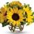 De Pere Greenhouse & Floral