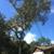 Fullington Lawn & Tree Services LLC