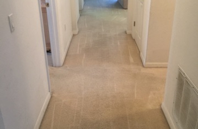 Carpet Cleaning Davenport - Davenport, FL