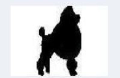 Puppy Love Grooming - Salem, OR