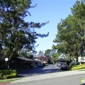 Pinecrest Apartments - Hayward, CA