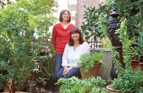 "Urban Gardening Tips From a True New York ""Horthead"""