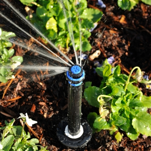 Andy's Sprinkler, Drainage & Lighting