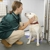 Gaithersburg Animal Hospital