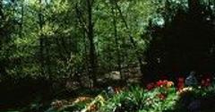 Yager Lawn Maintenance - Somerset, NJ