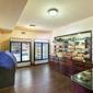 Comfort Suites Airport North - San Antonio, TX