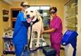 Cheektowaga Veterinary Hospital - Cheektowaga, NY
