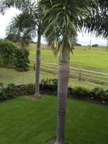 Cabana lawn and garden