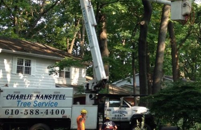 Charlie Nansteel Tree & Excavation LLC - Bangor, PA