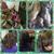 HD doobies  Hair Salon