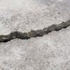 KC Mudjacking & Concrete Repair