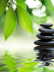 Massage Green Spa - San Marcos