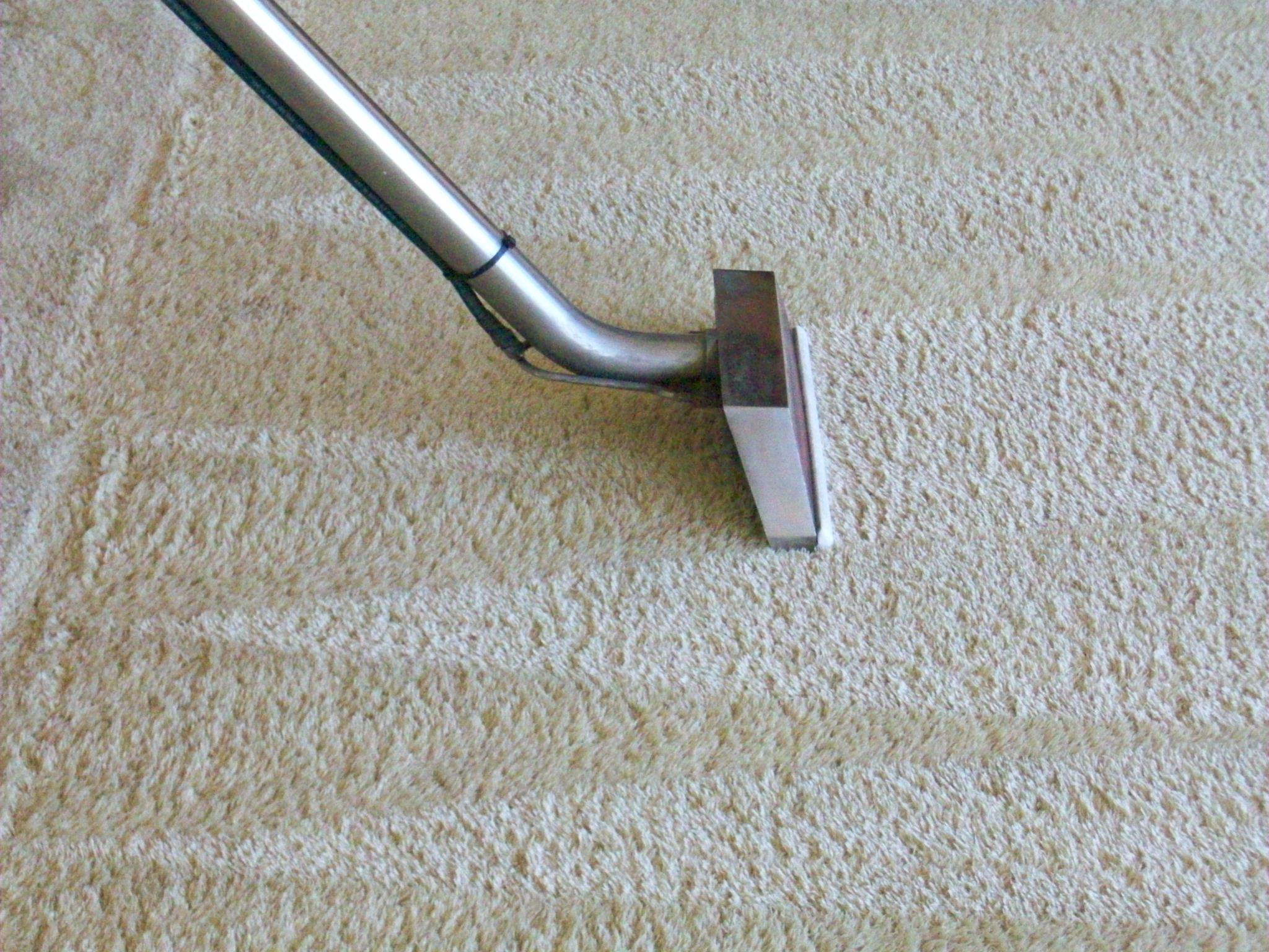 Steam Clean Or Shampoo Carpet Floor Matttroy