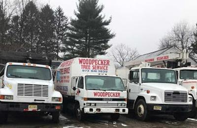 Woodpecker Tree Service