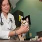 North Bay Animal & Bird Hospital - Tampa, FL