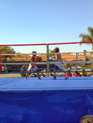 BOXING RING RENTAL SERVICES