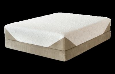 Beds Beds Beds - Tampa, FL